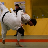 Haute Voltige - Judo