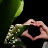 Cœur et Clochettes - Portfolio du 1er Mai